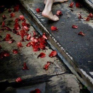 sacred-blood-image-16